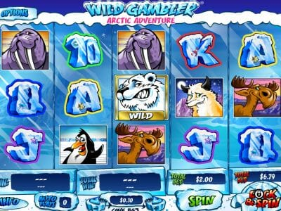 Super wins casino no deposit bonus