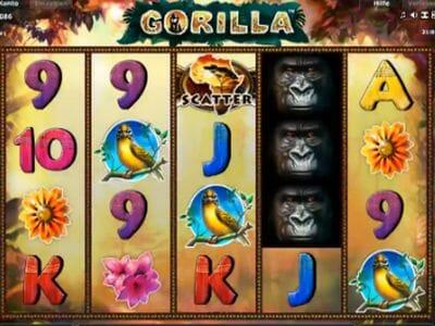 Gorilla Spiele Online
